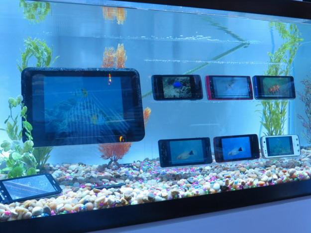 Водонепроницаемые смартфоны и планшеты от Fujitsu